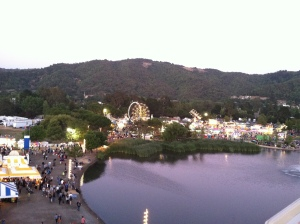 FROM ON TOP OF THE FERRIS WHEEL