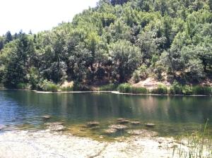 Phoenix Lake 1