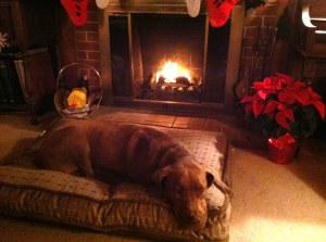 copper by fireplace at Xmas