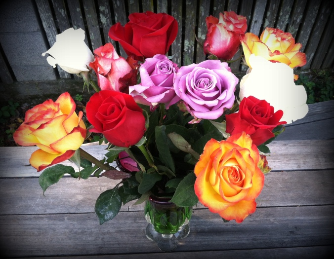 Mother's Day Roses from Matthew 2014