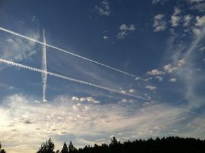 decorated sky