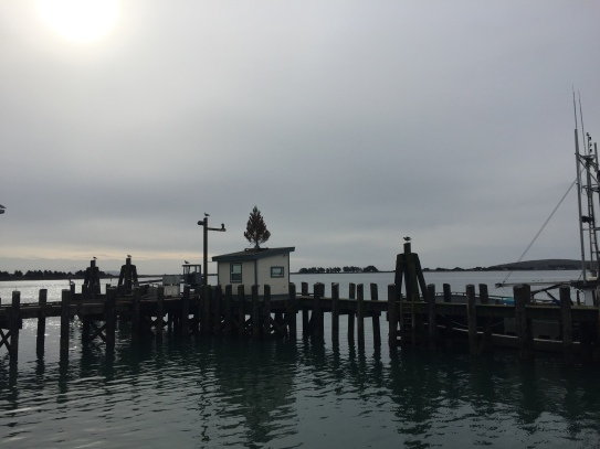 taken from deck at The Tides Wharf Restaurant (1)