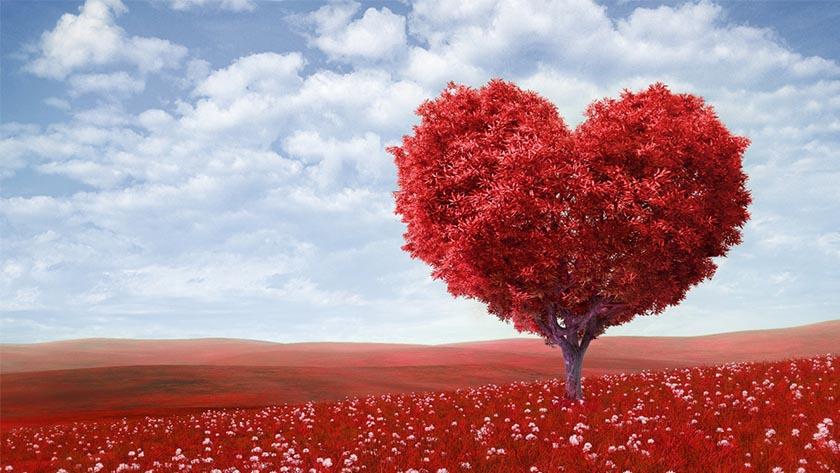 valentines-day tree