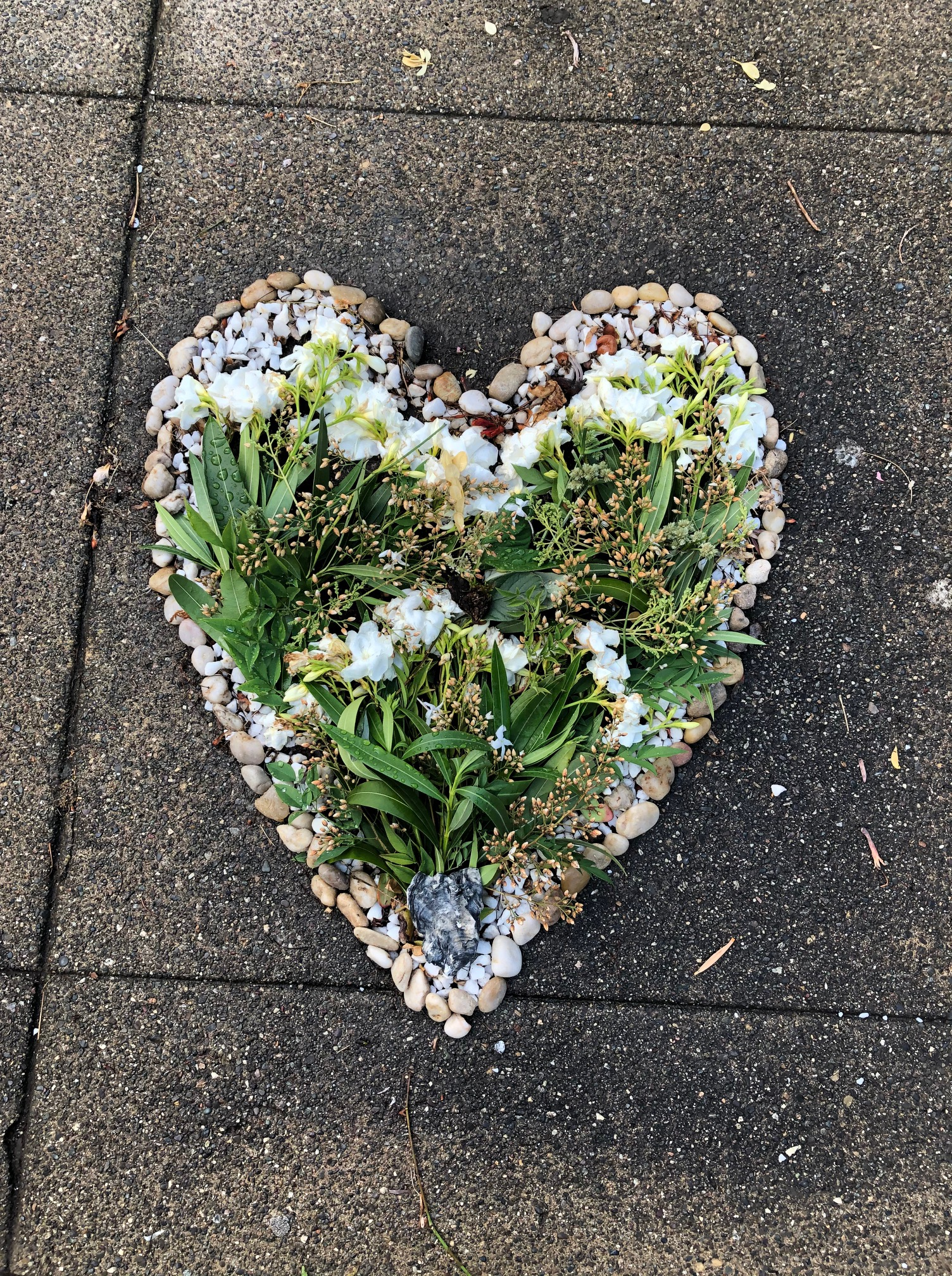 spreading love in the neighborhood